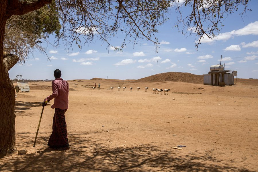 Arndt Peltner    FN talar om att 20 miljoner människor i länder som Nigeria, Sydsudan, Jemen och Somalia är drabbade av den långvariga torkan och står vid katastrofens rand.