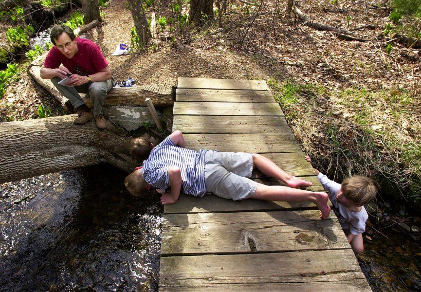 Elise Amendola/AP/TT   Det finns mycket att studera utomhus.