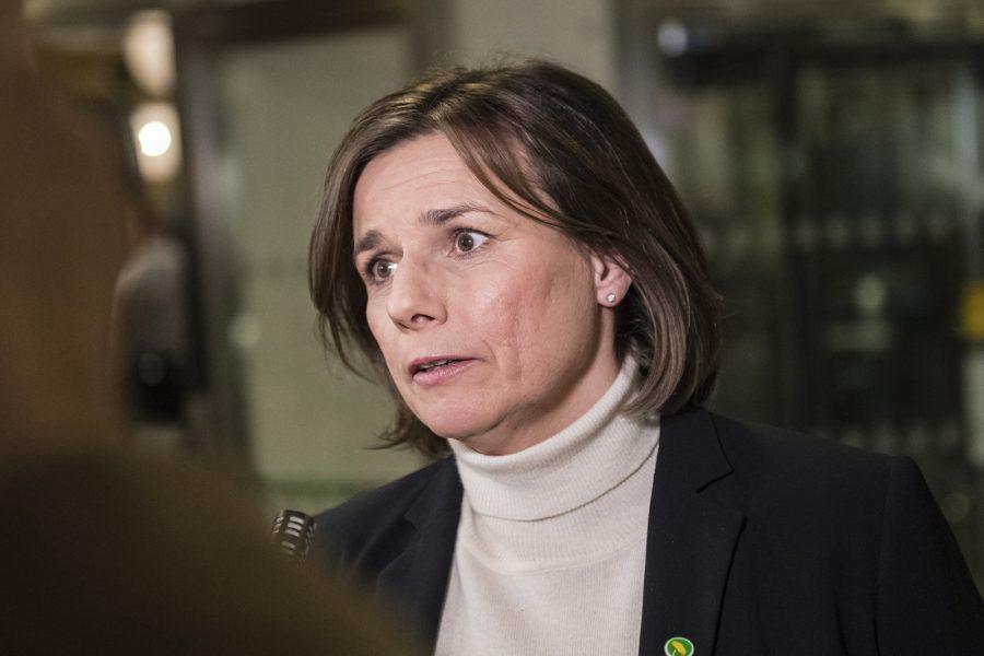 Vilhelm Stokstad/TT   Miljöpartiets språkrör Isabella Lövin (MP) presenterade det klimatpolitiska rådet.