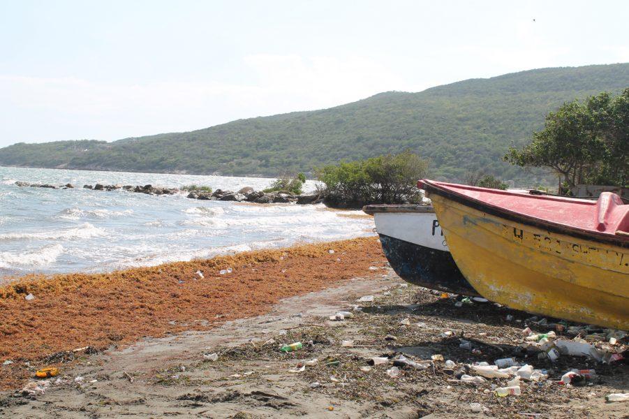Zadie Neufville/IPS | Uneps chef Erik Solheim säger att miljökostnaderna för det plastavfall som dumpas i haven ligger på minst åtta miljarder dollar om året.
