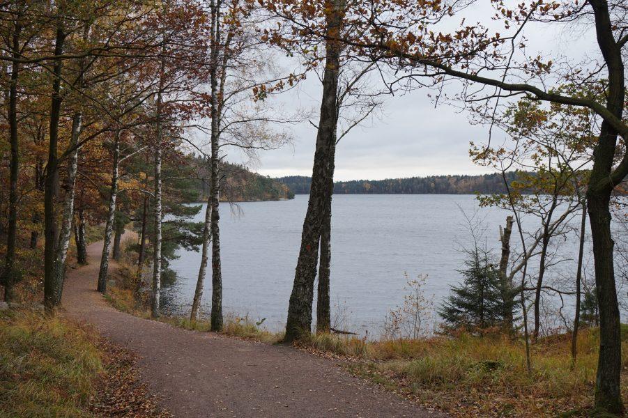 Ingemar Tigerberg   En av alla sjöar att promenera kring i Delsjöområdet.