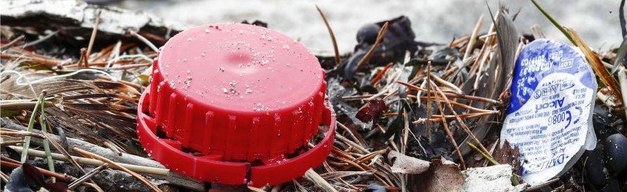 8 miljoner ton plast hamnar varje år i haven och enligt WWFs uppskattningar svävar nu 150 miljoner ton plast runt i haven.