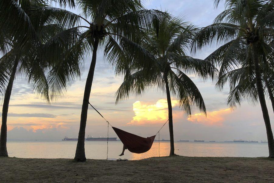 Wong Maye-E/AP |Trots klimatförändringarna fortsätter många att flyga utomlands till varmare länder på semestern.
