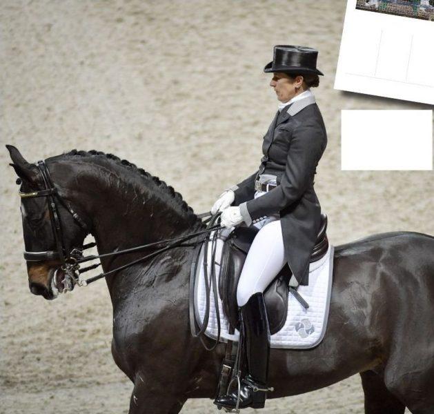 Janne Näsström från Cirkusakademien menar att samma lagar och regler borde gälla för häst- och hundsporterna som för cirkusdjuren.