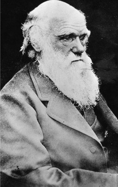 AP/TT|Biologen och geologen Charles Darwin.
