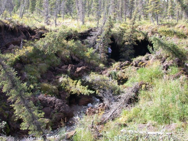 Tinande permafrost har orsakat markkollaps i Alaska.