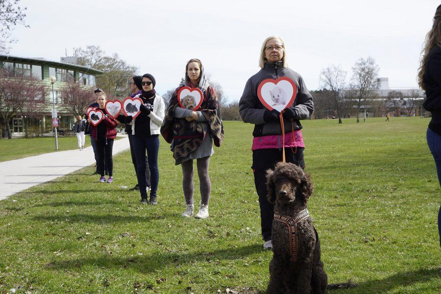 Djurrättsalliansen har samlat in 68 000 namnunderskrifter i protest mot djurförsöken vid Göteborgs universitet.