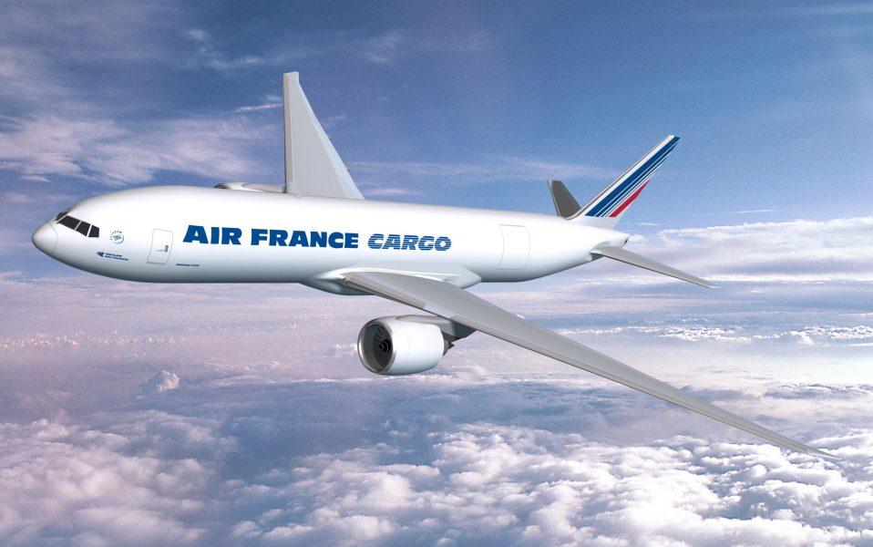 Under färden från Abidjan till Paris dog en tioåring i lastutrymmet.