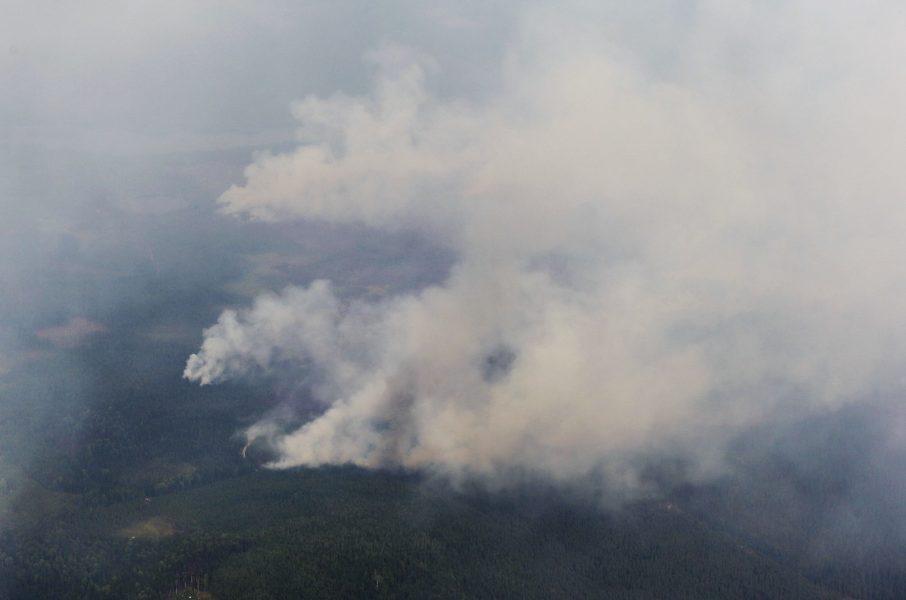 De svåra skogsbränderna sommaren 2018 ledde till en intensiv debatt om brandberedskapen.