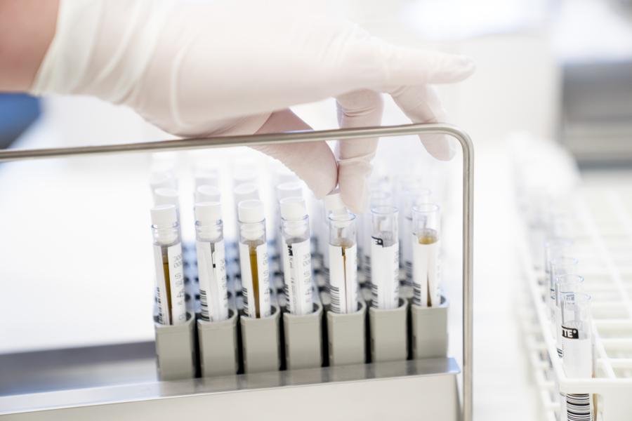 Vetenskapsrådet har tagit emot över 200 ansökningar från forskare som vill ha bidrag för pandemiforskning.