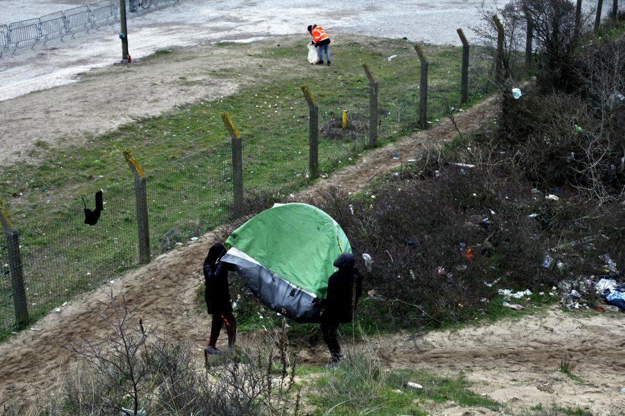 Nu Vill Frankrike Och Storbritannien Helt Stoppa Batmigrationen Nyhetsmagasinet Syre