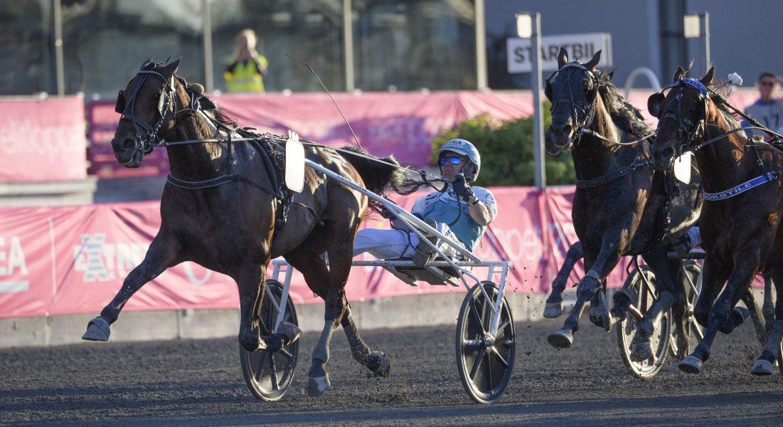 I USA har hästen Propulsion genomgått en operation som bedövar nedre delen av benen.
