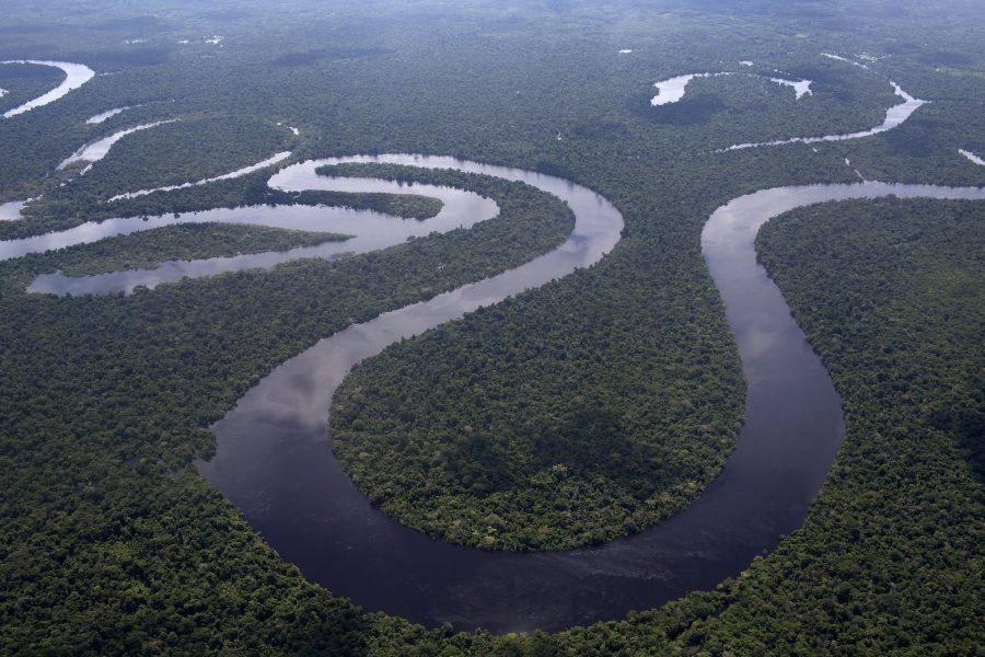 Stora delar av Amazonas regnskog riskerar att omvandlas till savann, enligt en ny forskningsrapport.