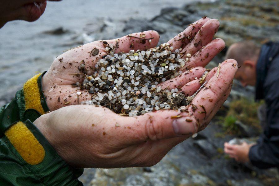 I dag diskuteras plasten i våra hav, i ett digital samtal på Göteborgs universitet.