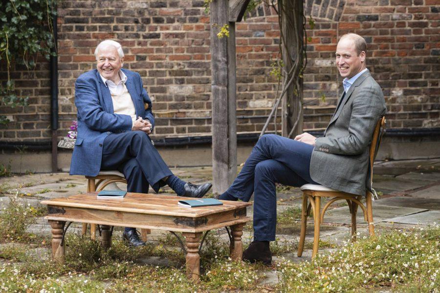 Prins William pratar med BBC-profilen David Attenborough om Earthshot-priset.