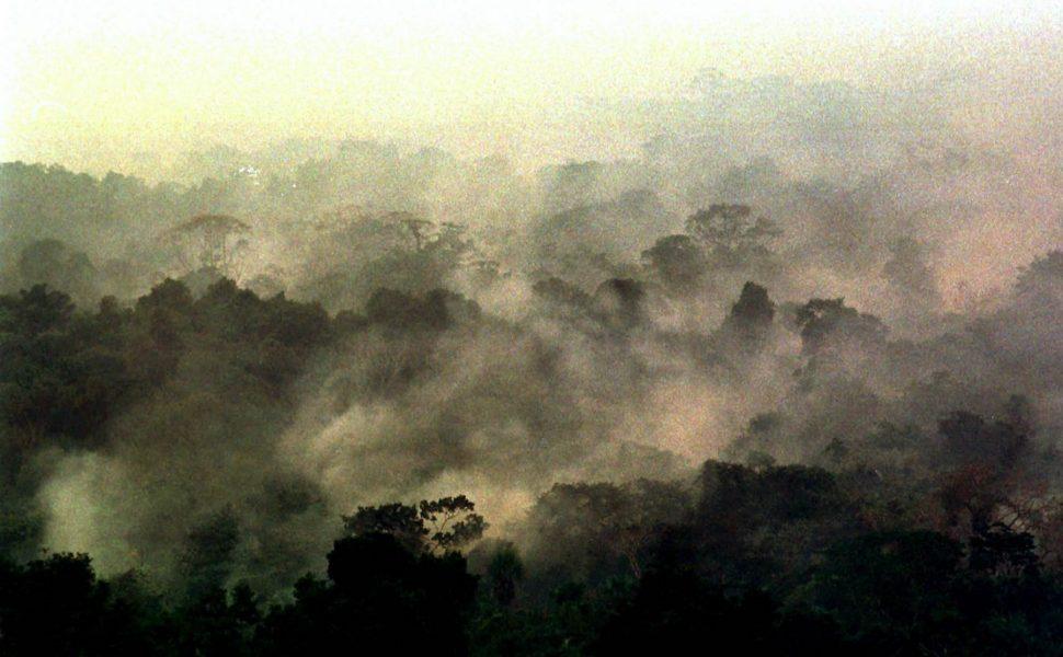Få svenskar känner till att EU:s handelsavtal med Merocsur-länderna riskerar öka avskogningen i Amazonas.