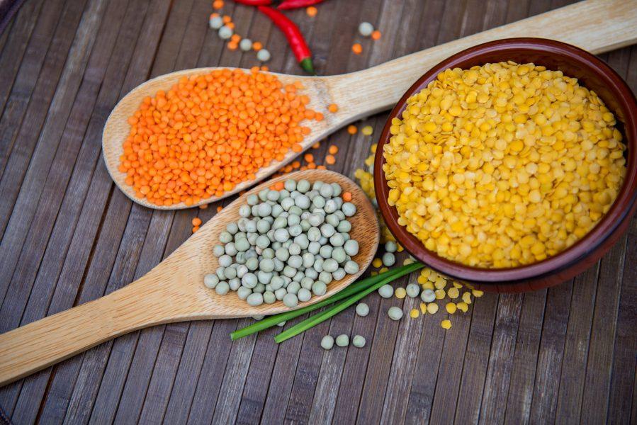 Framtidens växtbaserade proteiner är ett nytt forskningsämne på Örebro universitet.