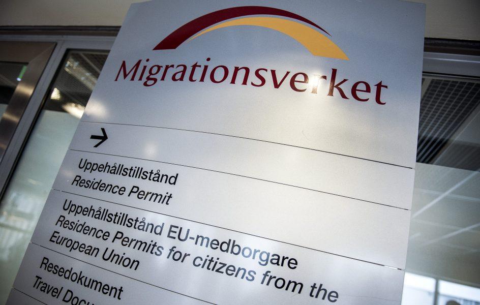 Jobbagenturen Pelekh Agency gav en falsk asylberättelse till sina klienter för att de skulle kunna jobba under tiden som de blev asylsökande i Sverige.