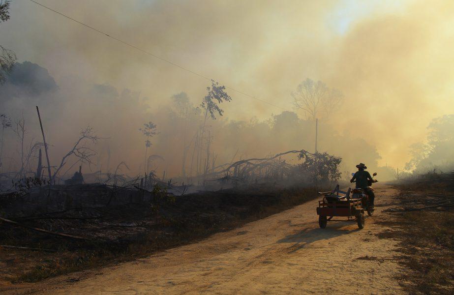 Ett eldhärjat område i Lábrea i brasilianskaAmazonasi augusti i år.