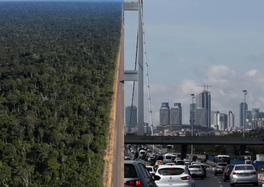 Vart 20:e år, sedan 1900-talets början, har massan för all infrastruktur fördubblats, samtidigt har den totala biomassan minskat.
