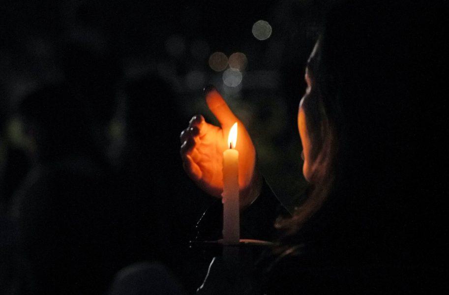 I dag uppmärksammar Naturskyddsföreningen att 212 miljöförsvarare mördades under 2019, i en digital ljusmanifestation.