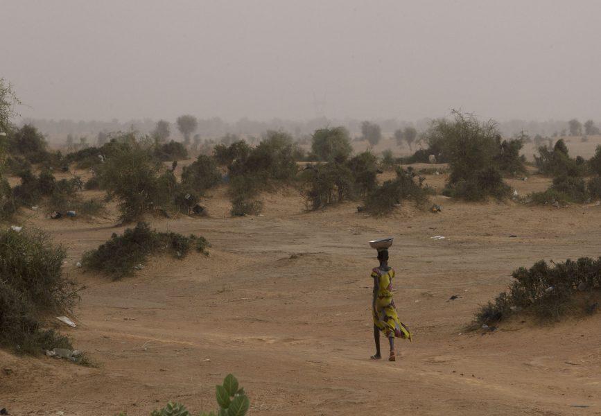 Sahelområdet har drabbats hårt av klimatförändringarna med återkommande torka och konflikter.