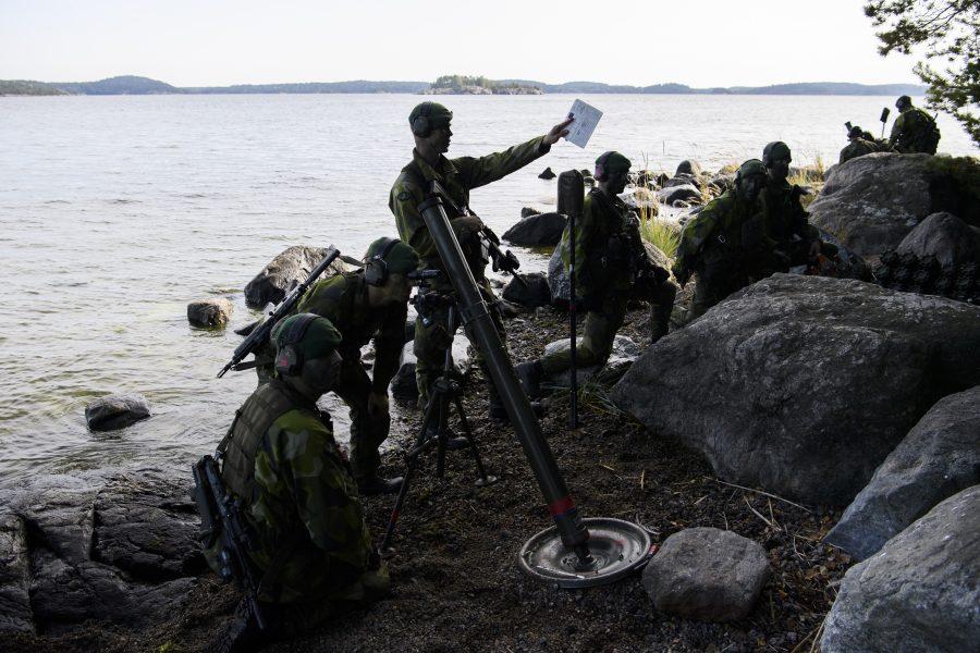 Vems säkerhet försvarar detta amfibieförband? Foto: Henry Montgommery/TT.
