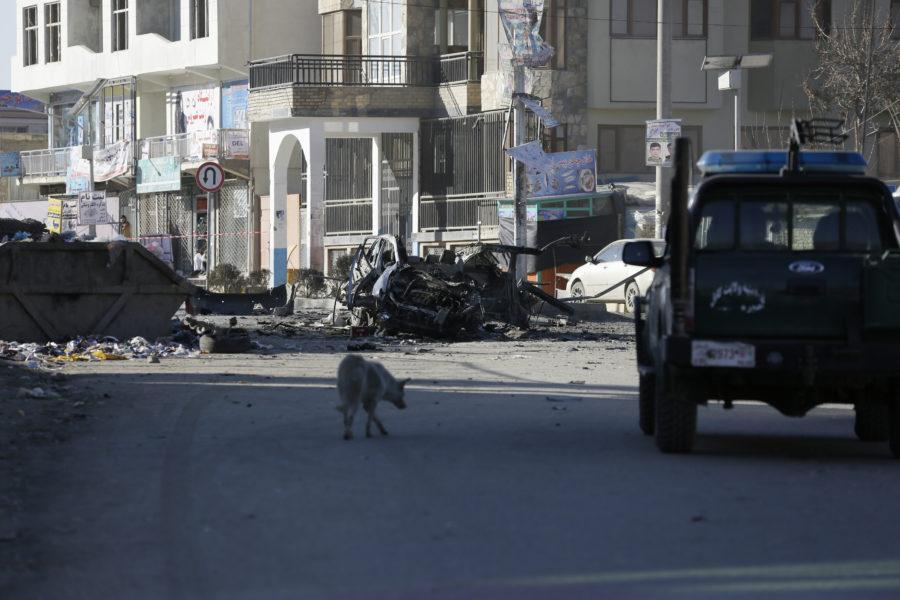 En bilbomb har dödat flera personer i Herat i Afghanistan.