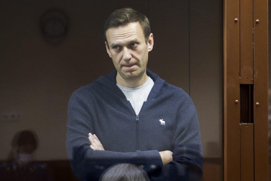 Aleksej Navalnyj vid rättegången mot honom i Moskva.