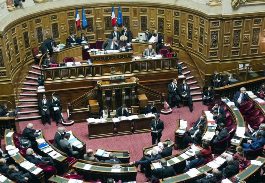 Den franska senaten har röstat nej till en folkomröstning om en ändring av konstitutionen.