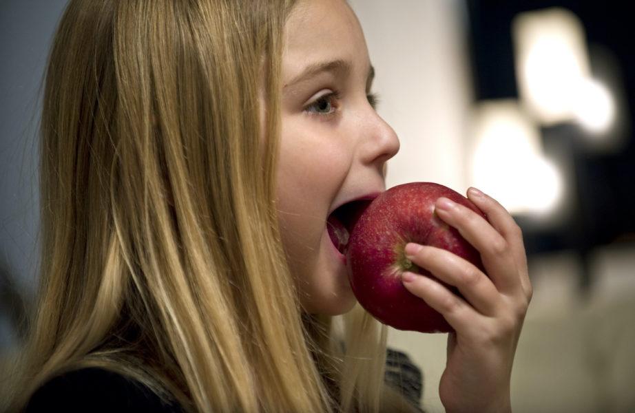I bland annat äppelskal finns ämnen som tycks vara positiva för minnet och tankeförmågan, enligt en ny studie.