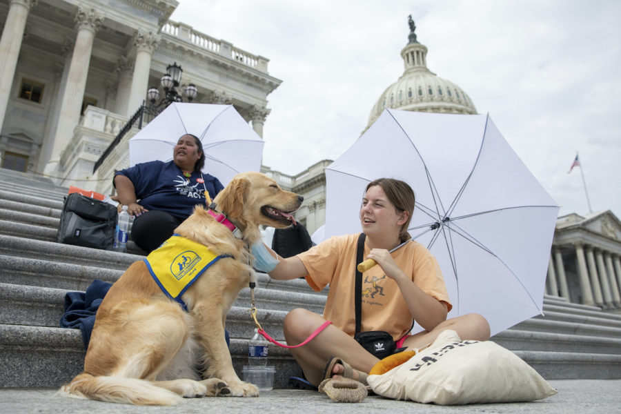 Casey Long och hunden Adrienne på trappan till USA:s kongress.