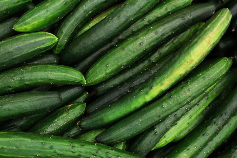 Utbudet av ekologiskt odlad gurka minskar avsevärt till följd av en tvist om eventuella växtgifter i ekogödsel.
