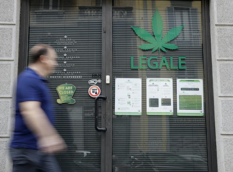 I Italien har en kampanj, från mitten av september, samlat in drygt en halv miljon namn till stöd för att folkomrösta om att legalisera cannabis.